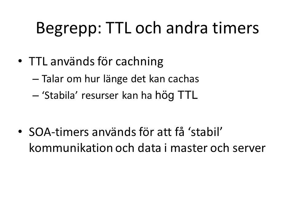 Begrepp: TTL och andra timers