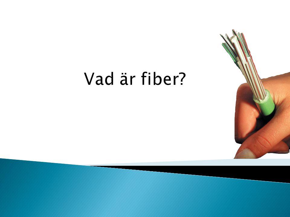 Vad är fiber