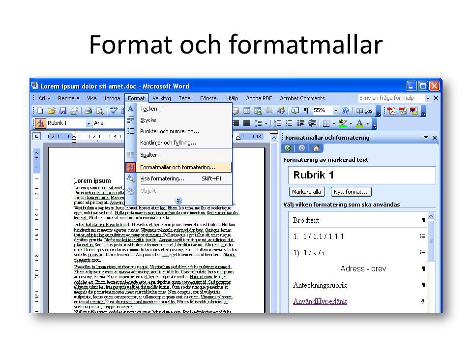 Format och formatmallar