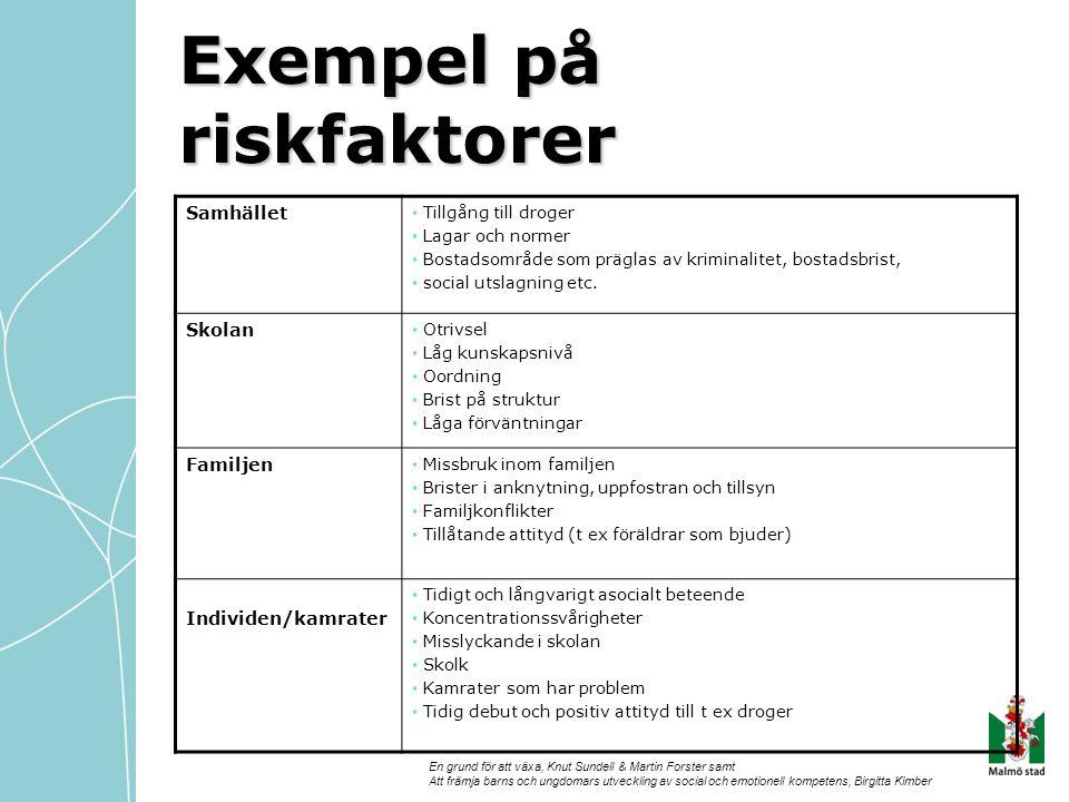 Exempel på riskfaktorer