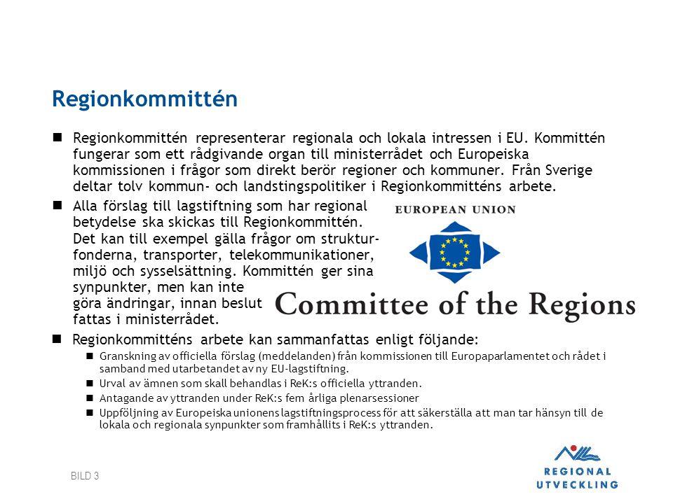 Regionkommittén