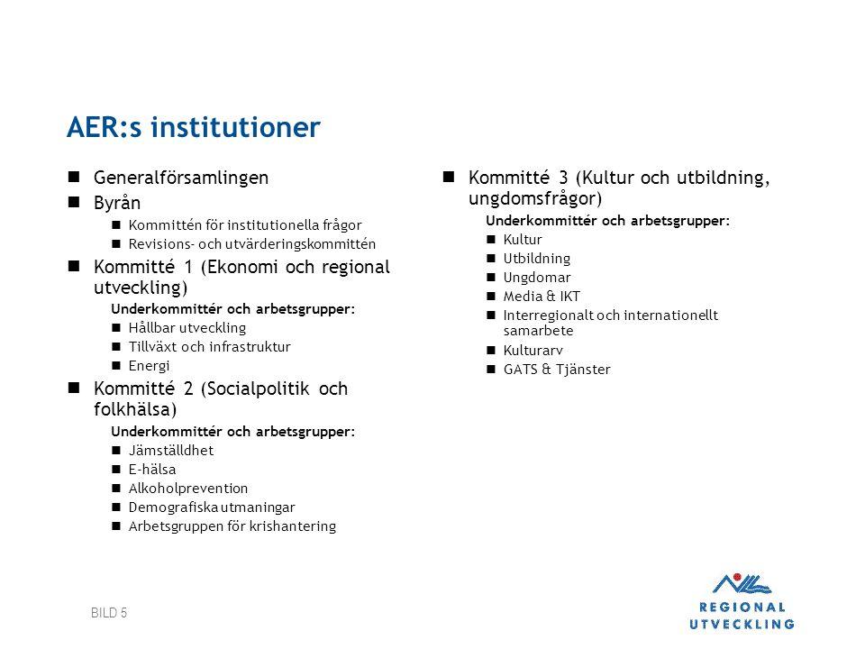 AER:s institutioner Generalförsamlingen Byrån