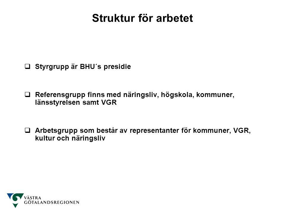 Struktur för arbetet Styrgrupp är BHU´s presidie
