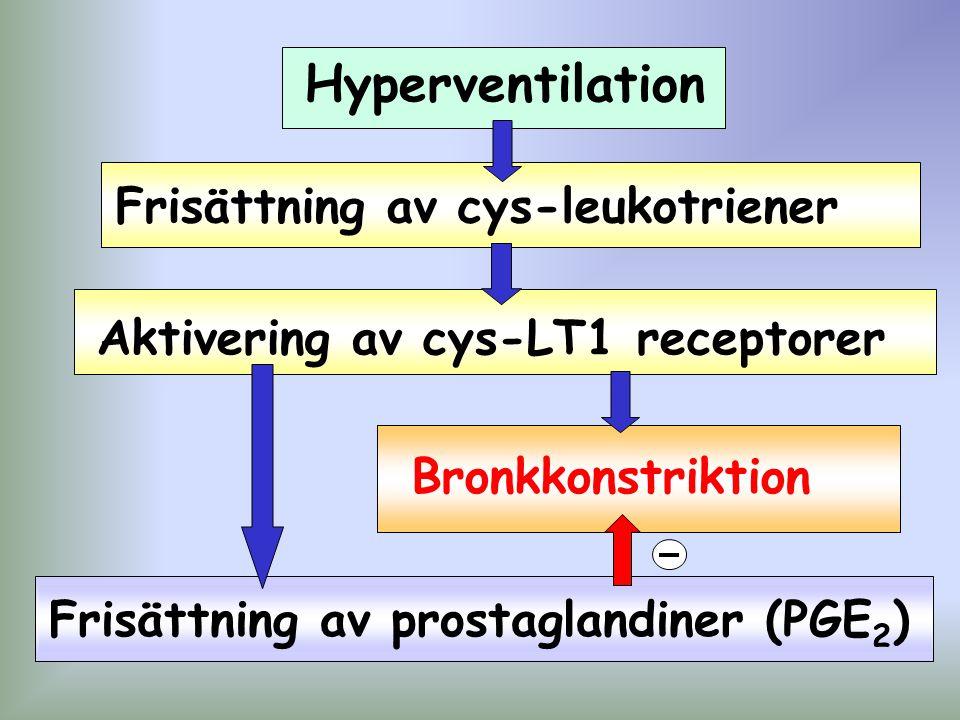 Hyperventilation Frisättning av cys-leukotriener