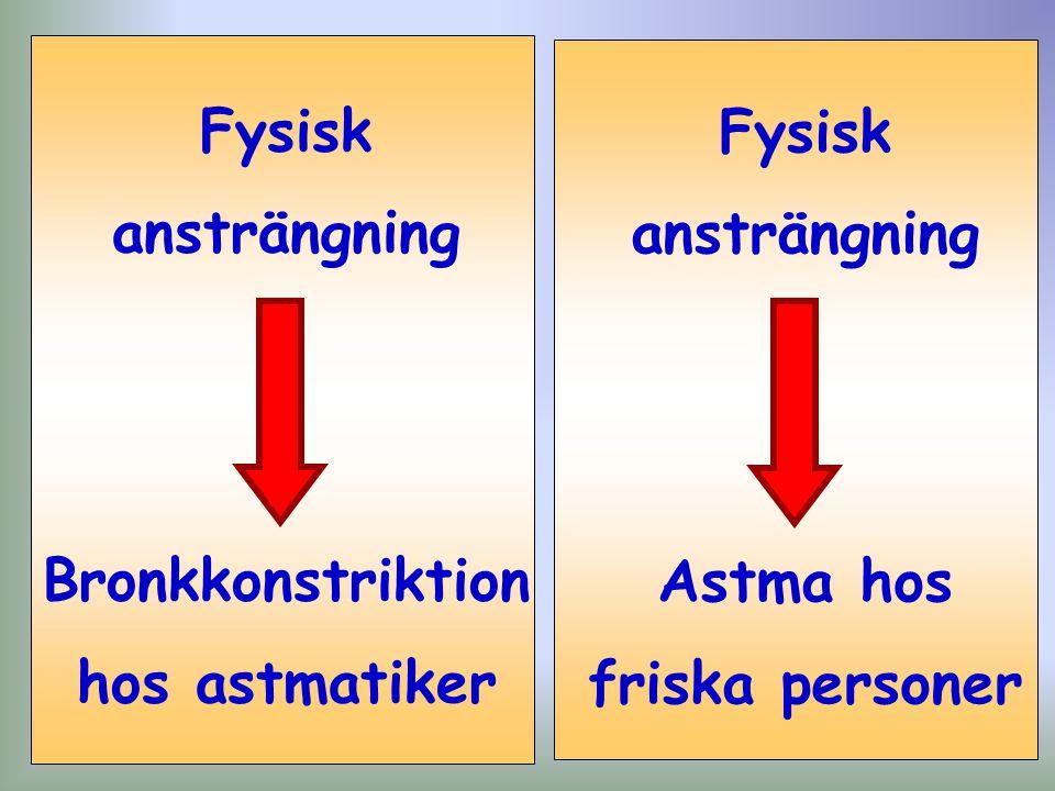 Bronkkonstriktion hos astmatiker Astma hos friska personer