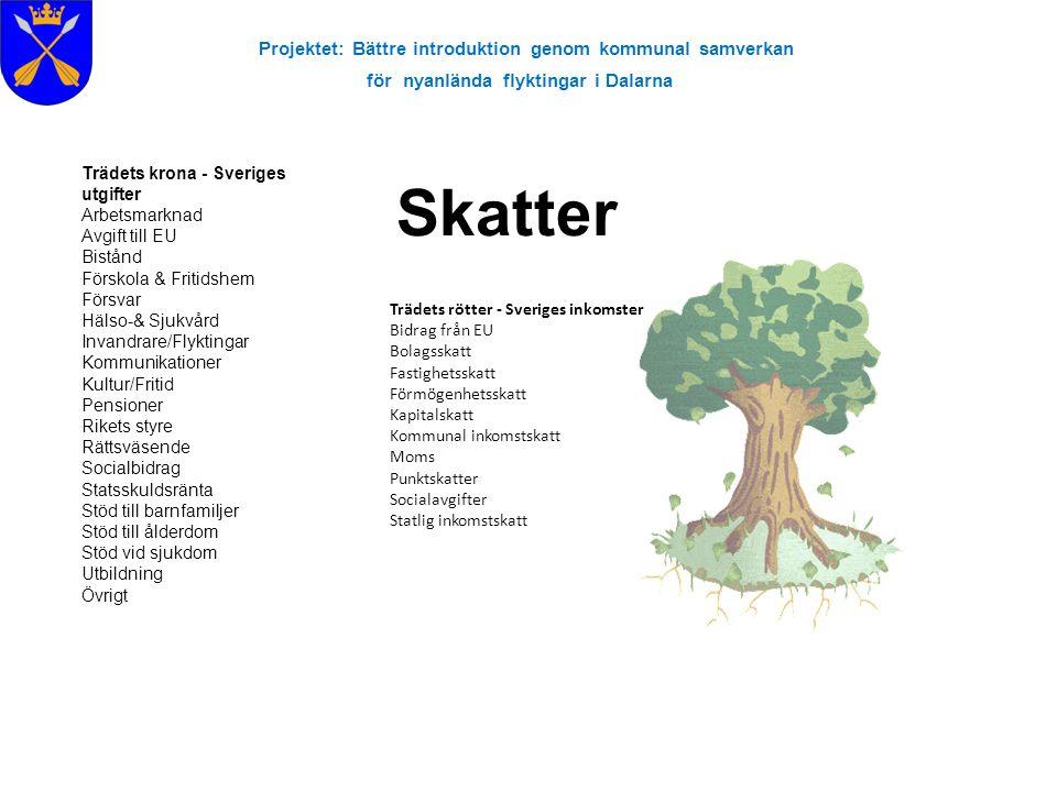 Skatter Projektet: Bättre introduktion genom kommunal samverkan