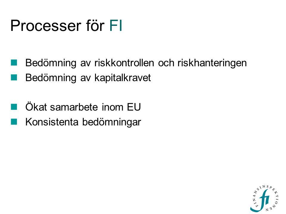 Processer för FI Bedömning av riskkontrollen och riskhanteringen