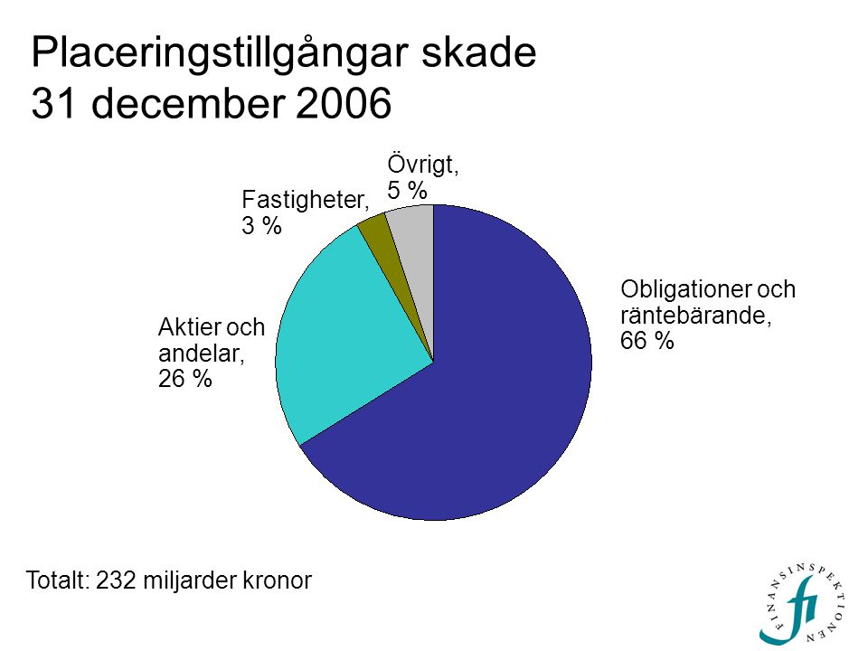 Placeringstillgångar skade 31 december 2006