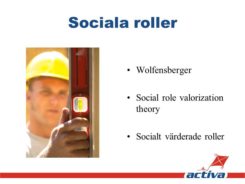 Sociala roller Wolfensberger Social role valorization theory