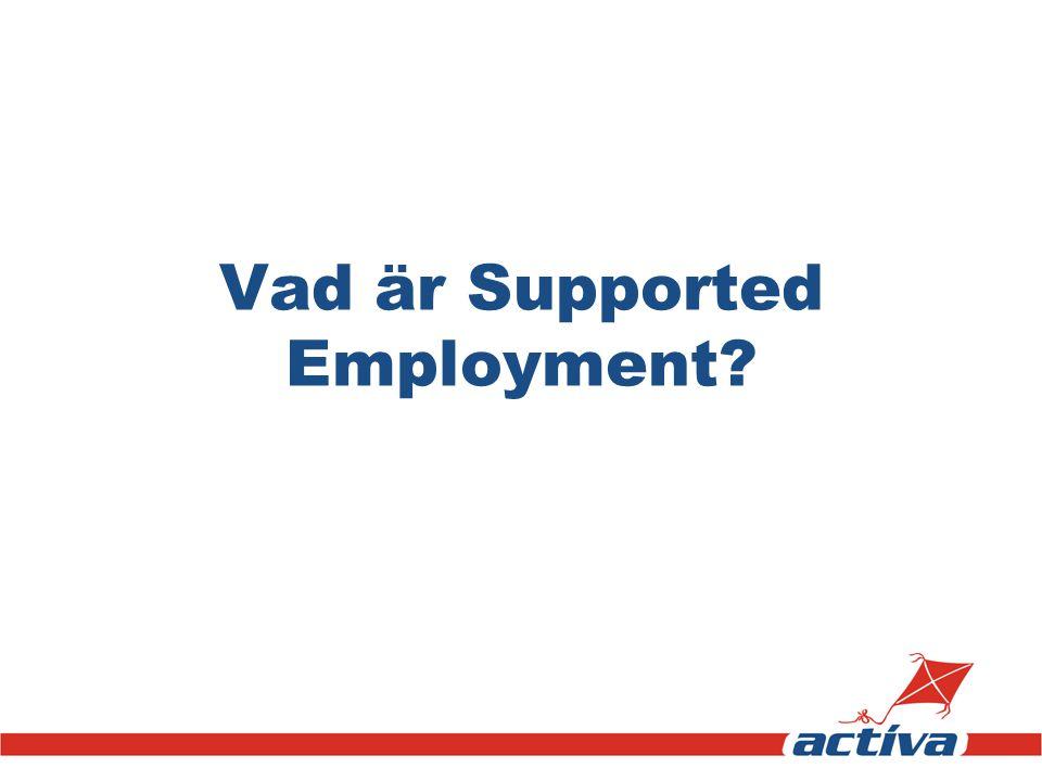 Vad är Supported Employment