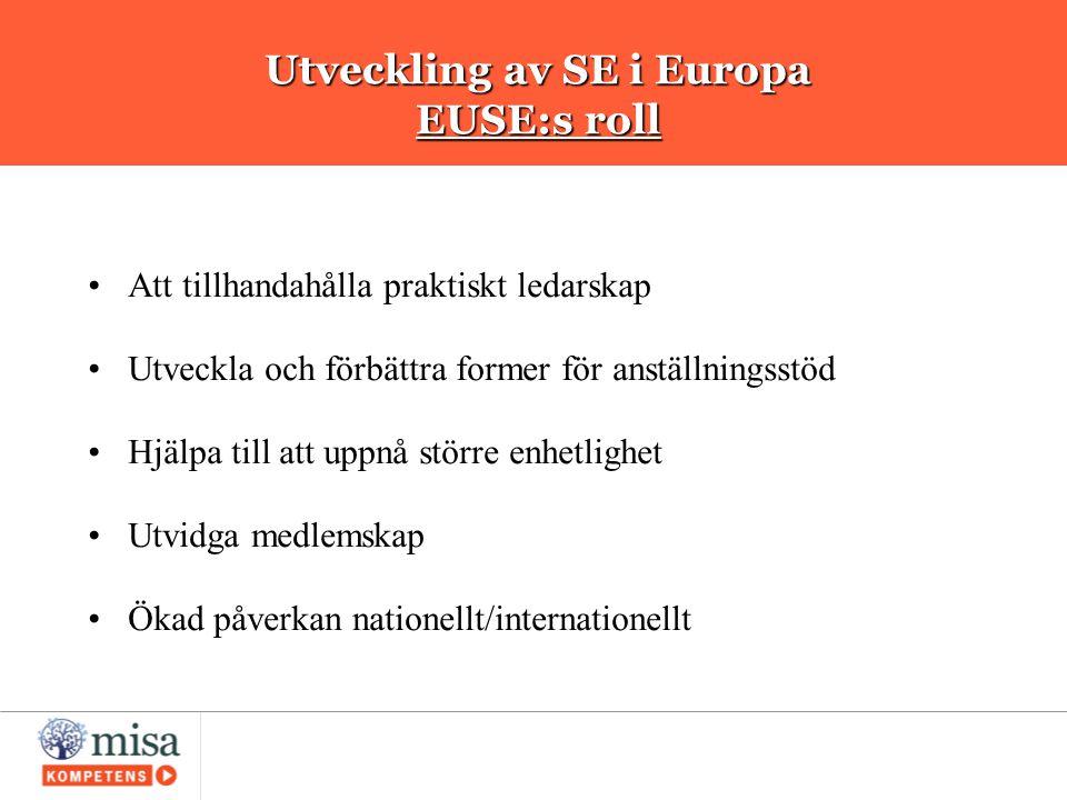 Utveckling av SE i Europa EUSE:s roll