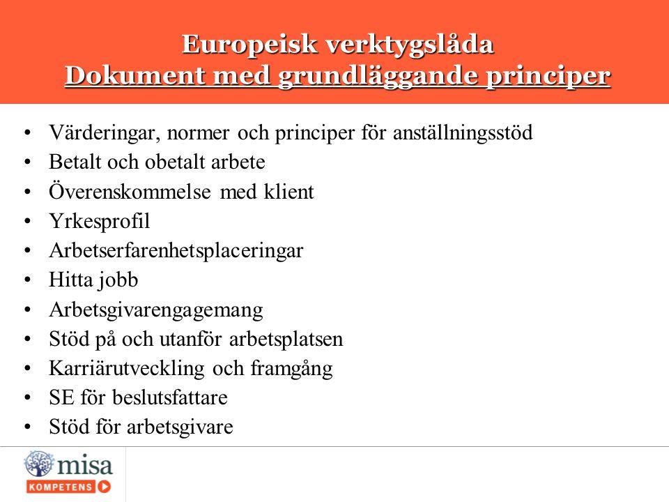Europeisk verktygslåda Dokument med grundläggande principer