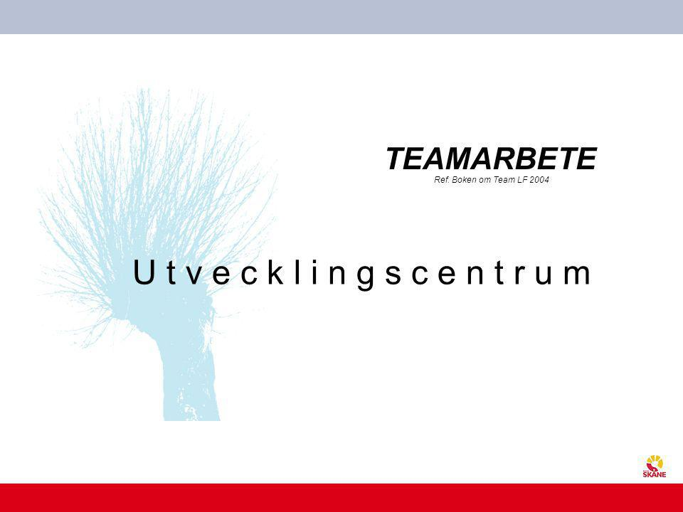 TEAMARBETE Ref. Boken om Team LF 2004