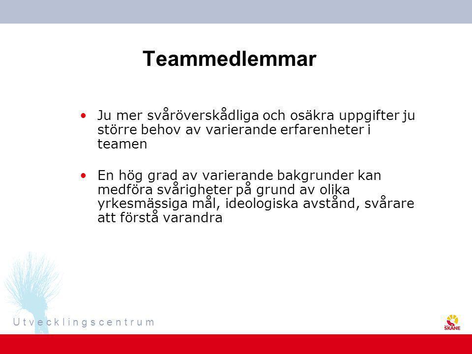 Teammedlemmar Ju mer svåröverskådliga och osäkra uppgifter ju större behov av varierande erfarenheter i teamen.