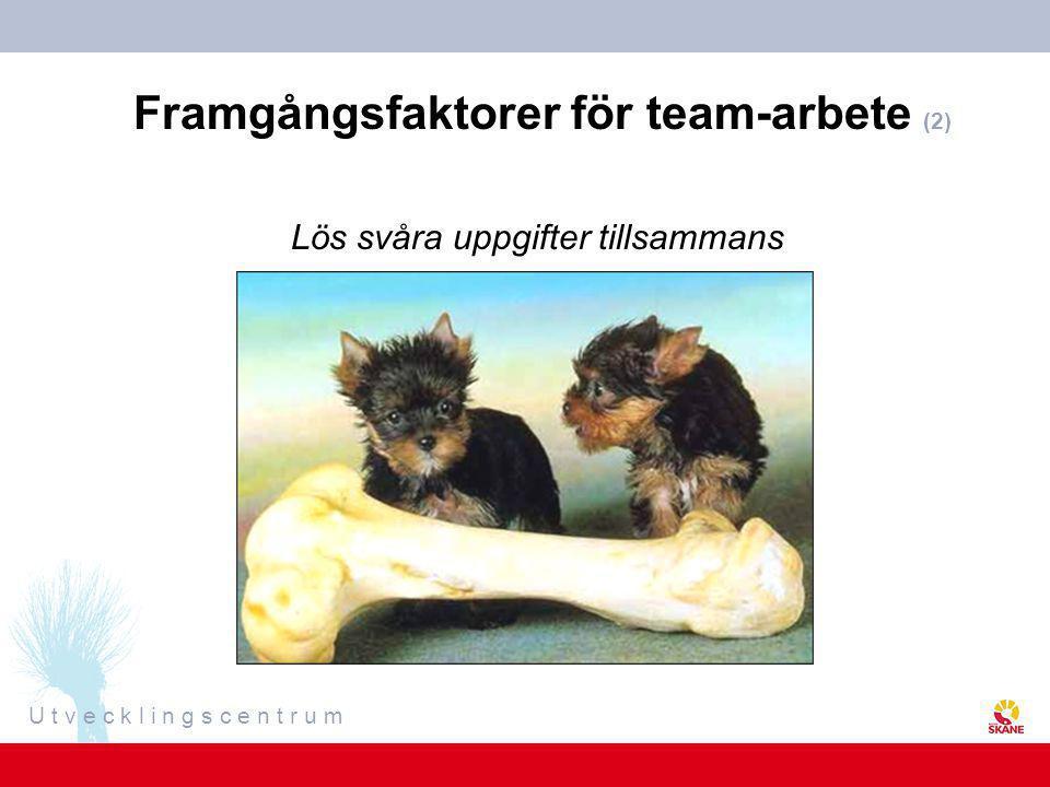 Framgångsfaktorer för team-arbete (2)