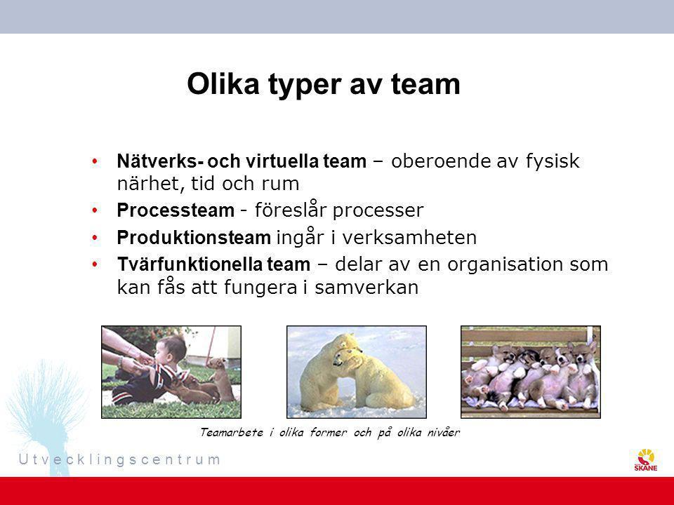 Olika typer av team Nätverks- och virtuella team – oberoende av fysisk närhet, tid och rum. Processteam - föreslår processer.