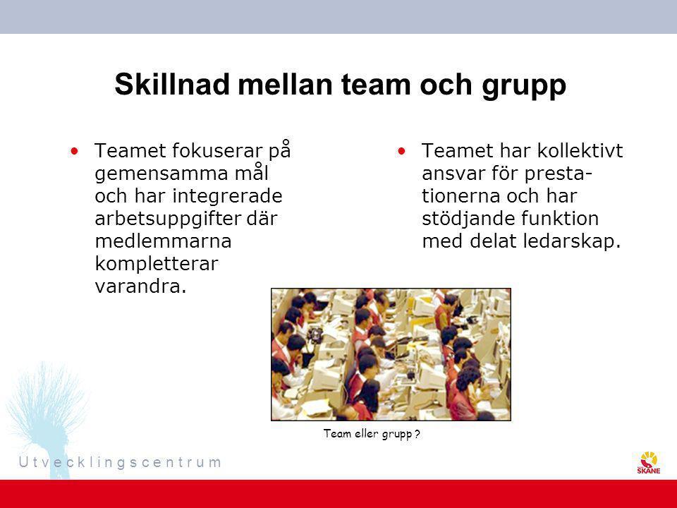 Skillnad mellan team och grupp