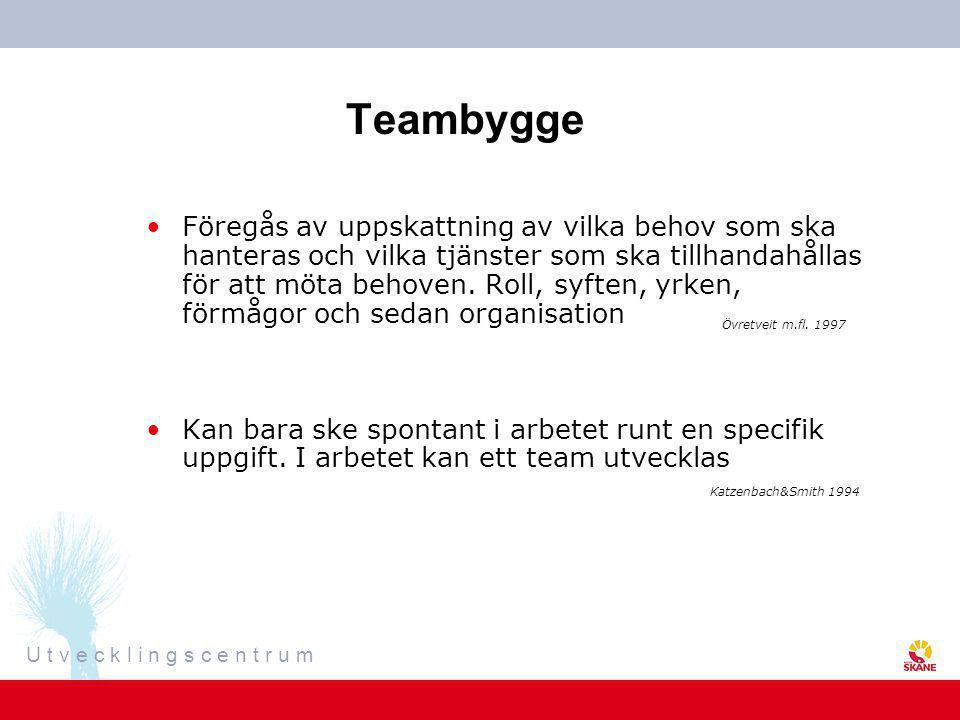 Teambygge