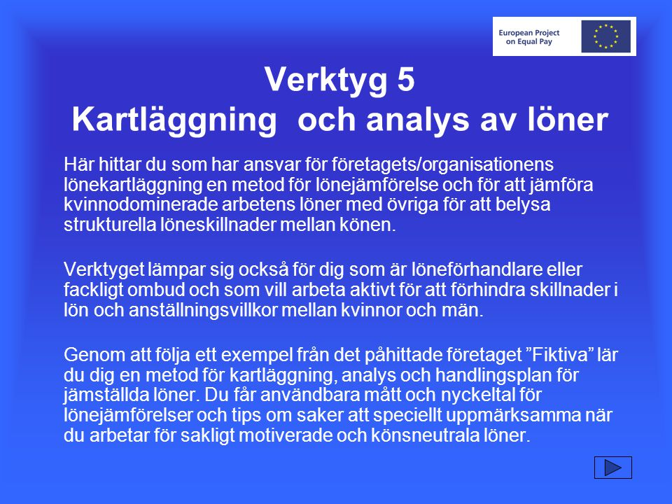 Verktyg 5 Kartläggning och analys av löner
