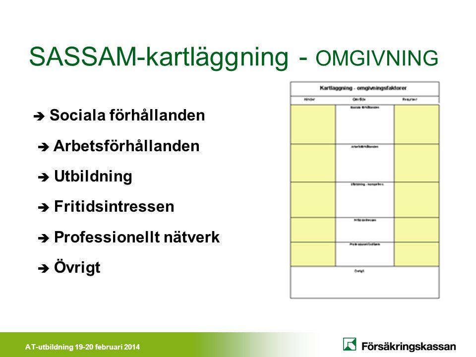 SASSAM-kartläggning - OMGIVNING