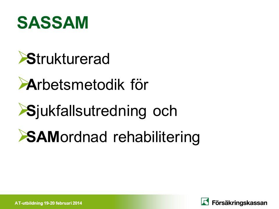 SASSAM Strukturerad Arbetsmetodik för Sjukfallsutredning och