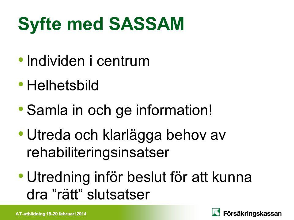 Syfte med SASSAM Individen i centrum Helhetsbild