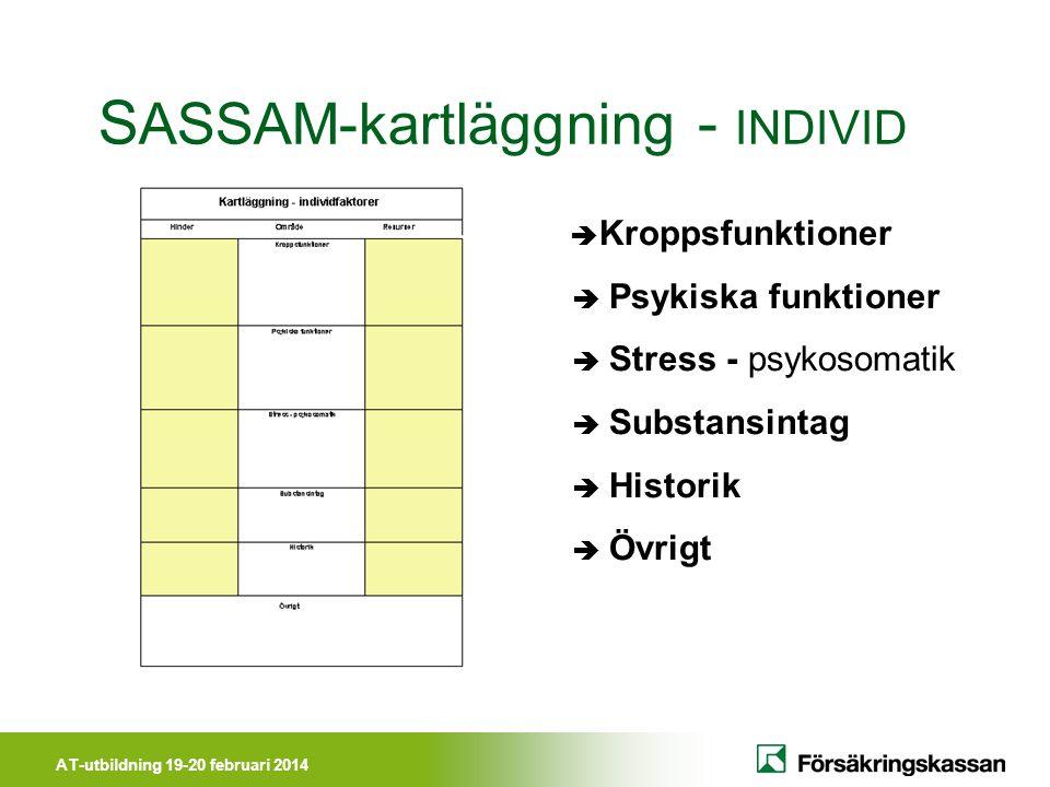 SASSAM-kartläggning - INDIVID
