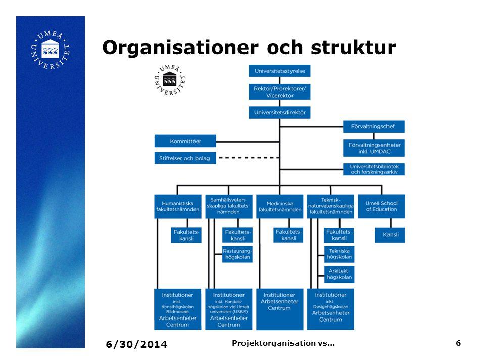 Organisationer och struktur