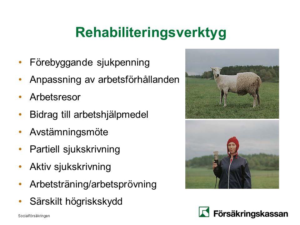 Rehabiliteringsverktyg