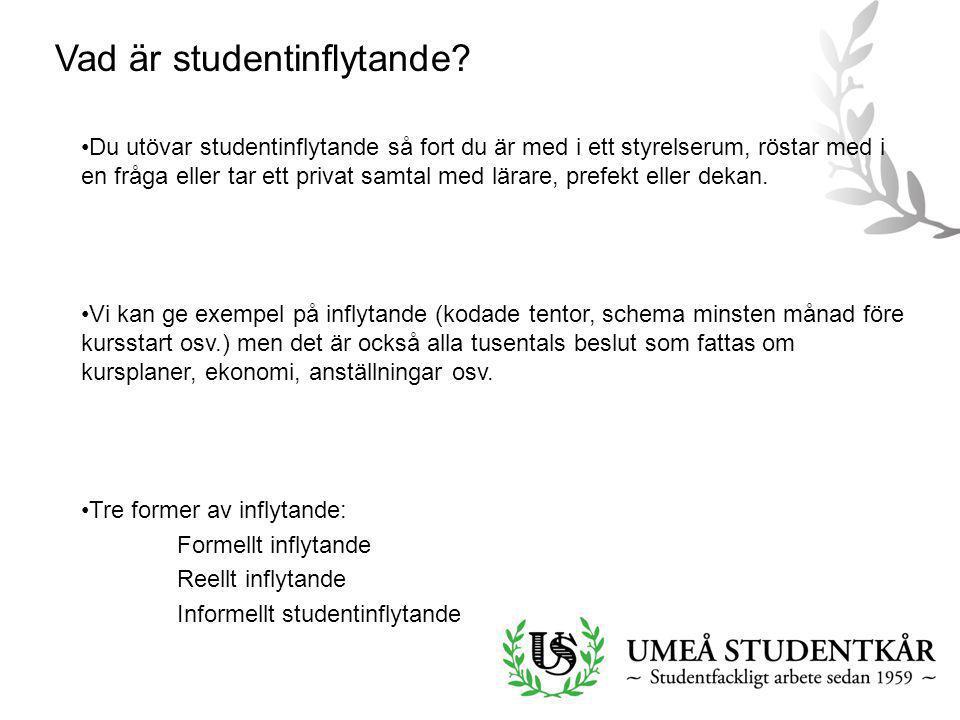 Vad är studentinflytande