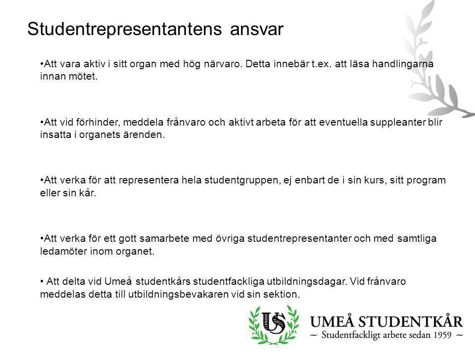 Studentrepresentantens ansvar