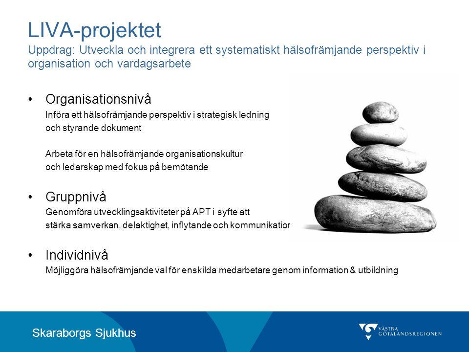 LIVA-projektet Uppdrag: Utveckla och integrera ett systematiskt hälsofrämjande perspektiv i organisation och vardagsarbete