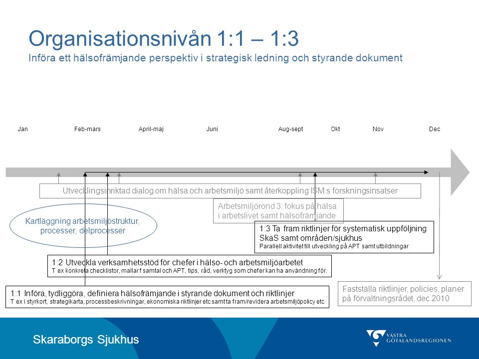 Organisationsnivån 1:1 – 1:3 Införa ett hälsofrämjande perspektiv i strategisk ledning och styrande dokument