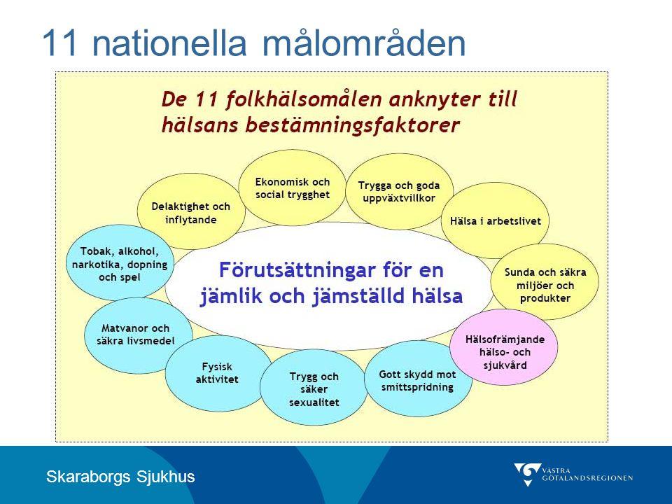 11 nationella målområden