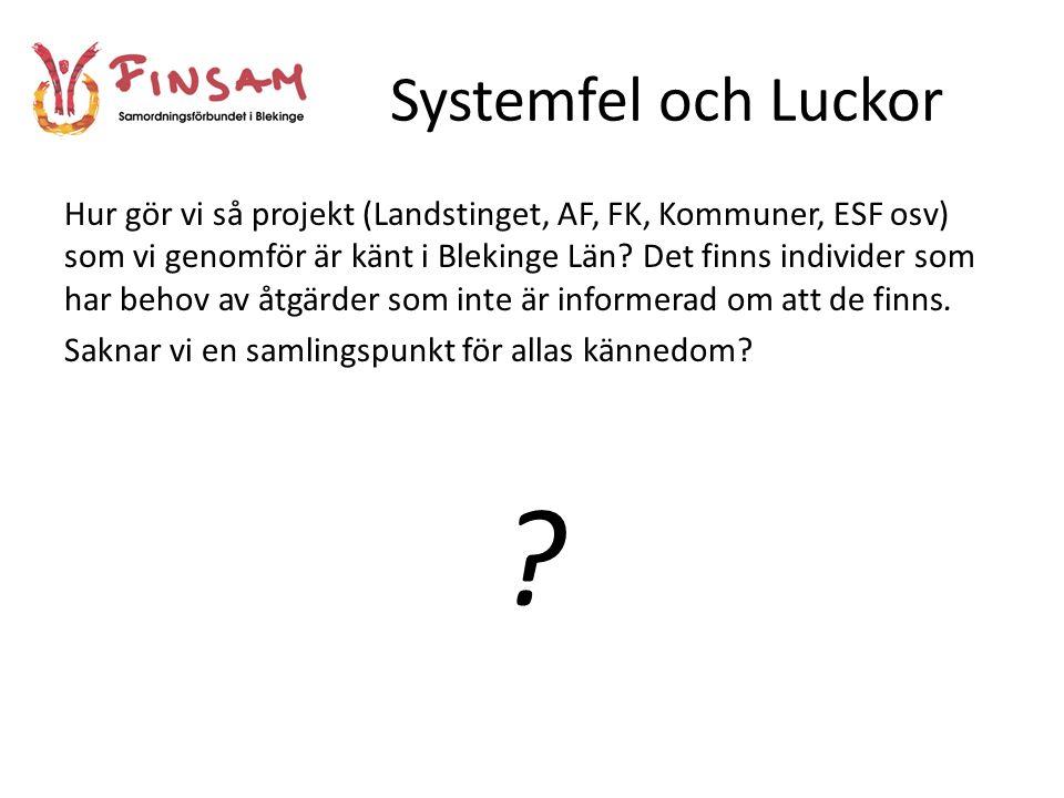 Systemfel och Luckor
