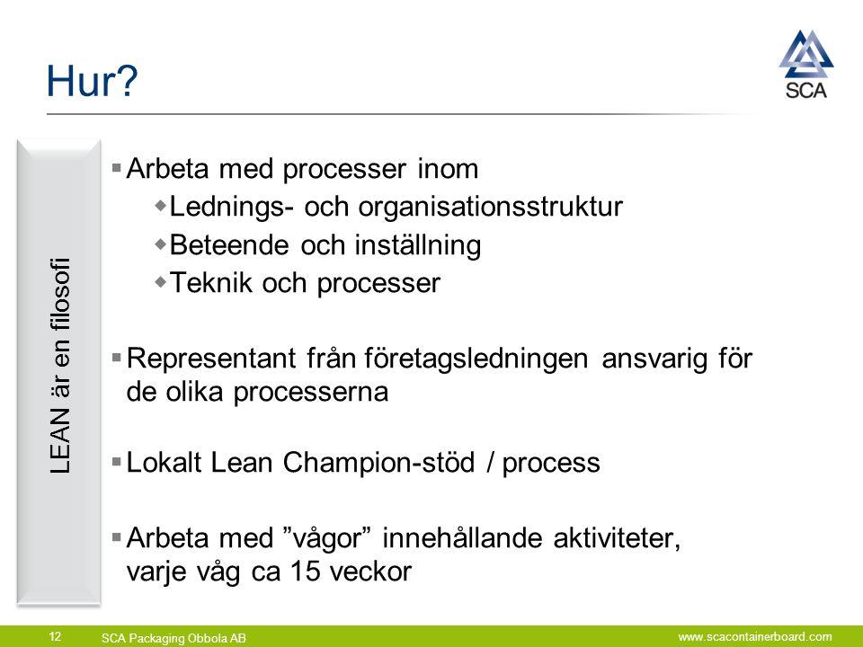 Hur Arbeta med processer inom Lednings- och organisationsstruktur