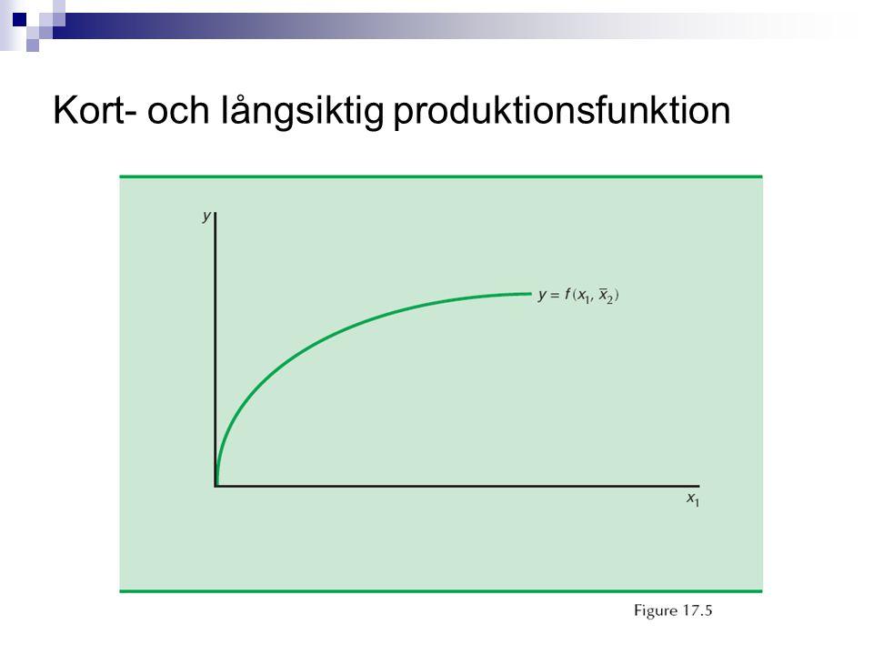 Kort- och långsiktig produktionsfunktion
