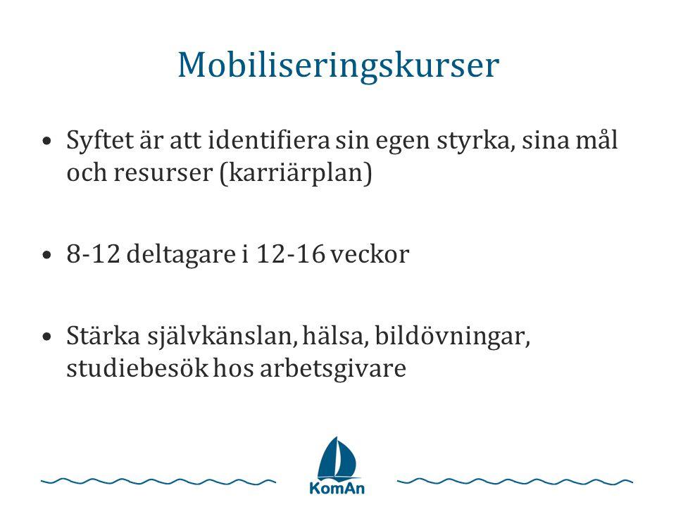 Mobiliseringskurser Syftet är att identifiera sin egen styrka, sina mål och resurser (karriärplan)