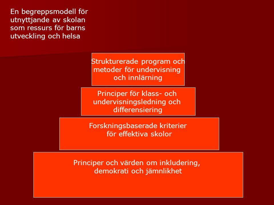 Strukturerade program och metoder för undervisning och innlärning