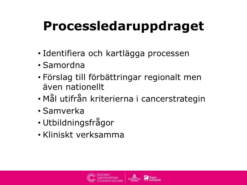 Processledaruppdraget