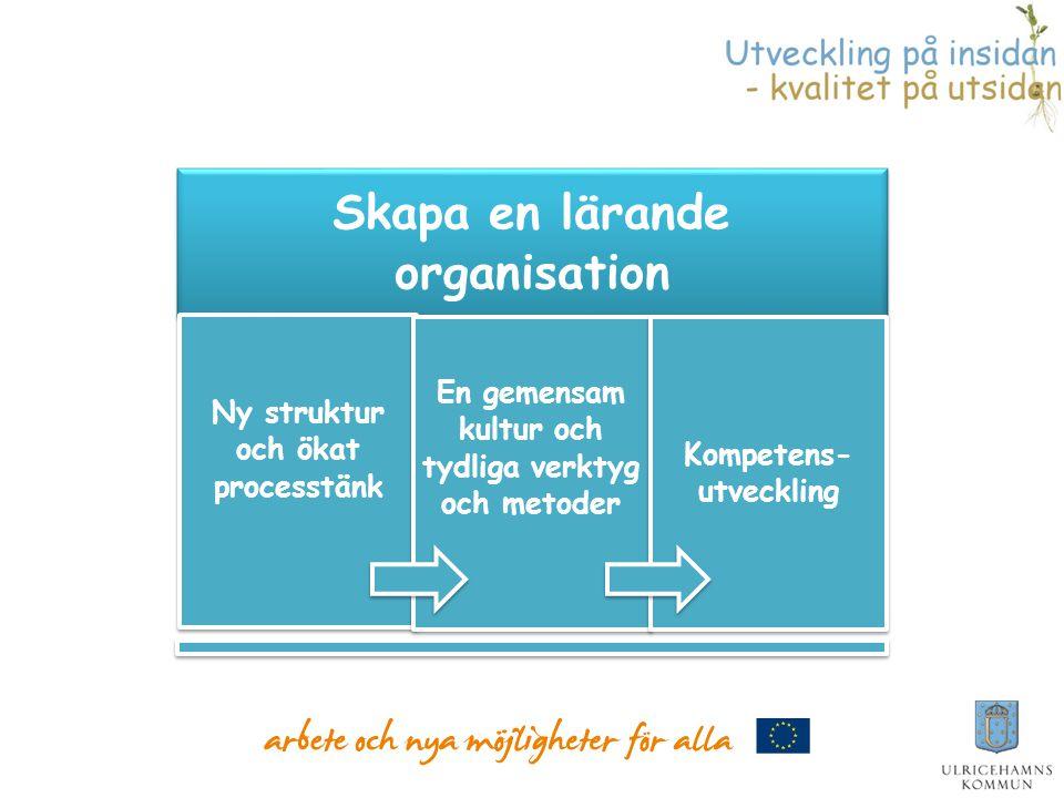 Ny struktur och ökat processtänk Kompetens-utveckling