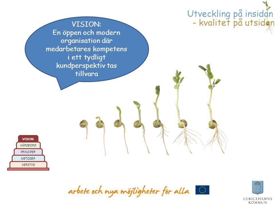 VISION: En öppen och modern organisation där medarbetares kompetens i ett tydligt kundperspektiv tas tillvara.