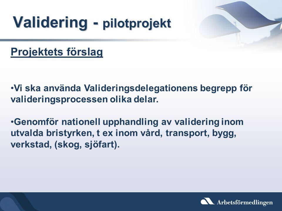 Validering - pilotprojekt