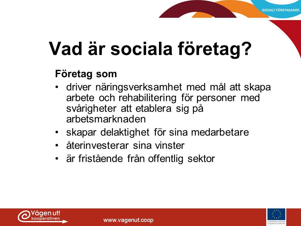Vad är sociala företag Företag som