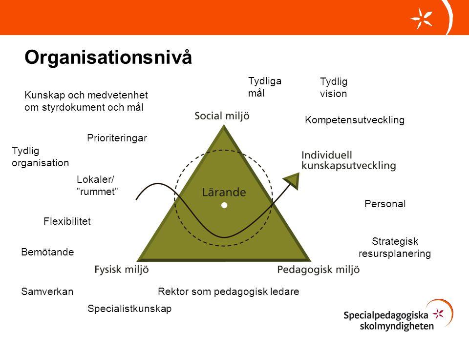 Organisationsnivå Tydliga mål Tydlig vision