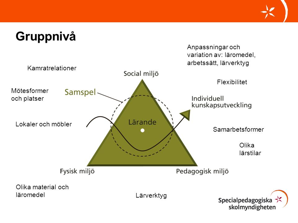 Gruppnivå Anpassningar och variation av: läromedel, arbetssätt, lärverktyg. Kamratrelationer. Flexibilitet.