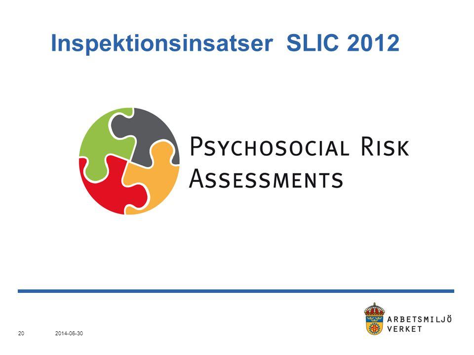 Inspektionsinsatser SLIC 2012