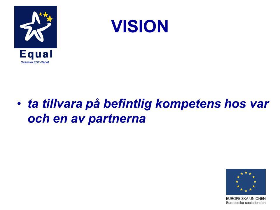 VISION ta tillvara på befintlig kompetens hos var och en av partnerna