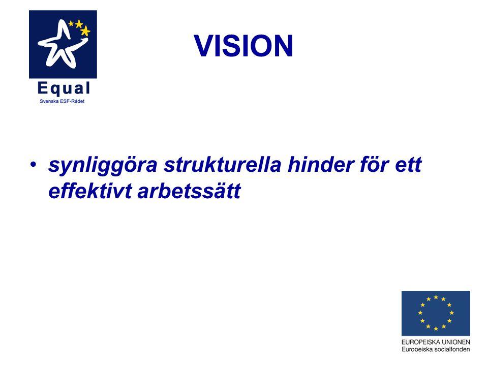 VISION synliggöra strukturella hinder för ett effektivt arbetssätt