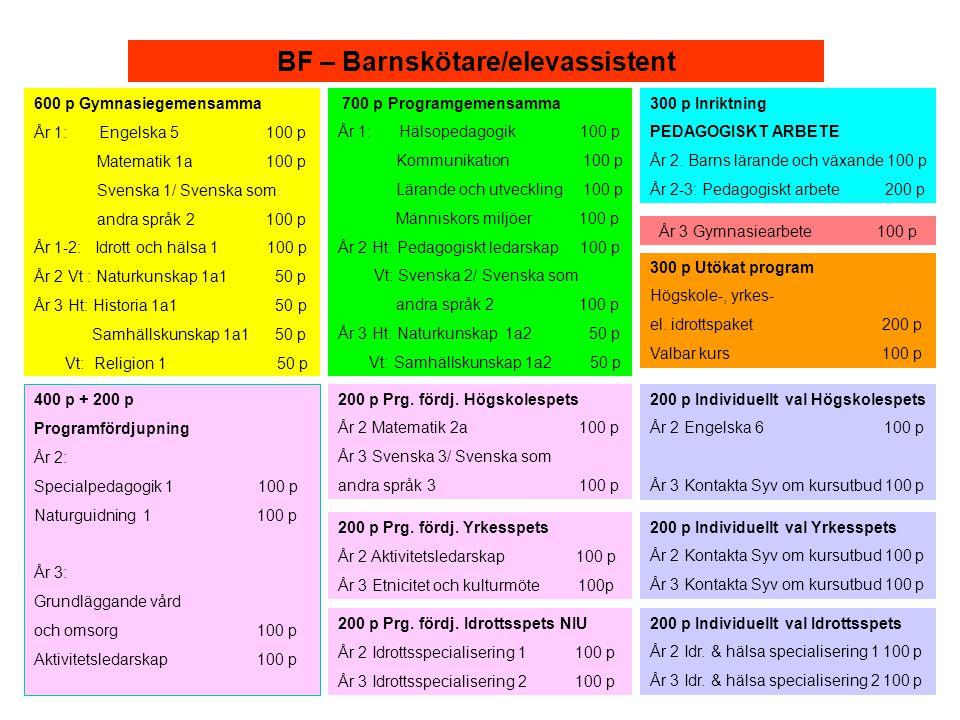 BF – Barnskötare/elevassistent